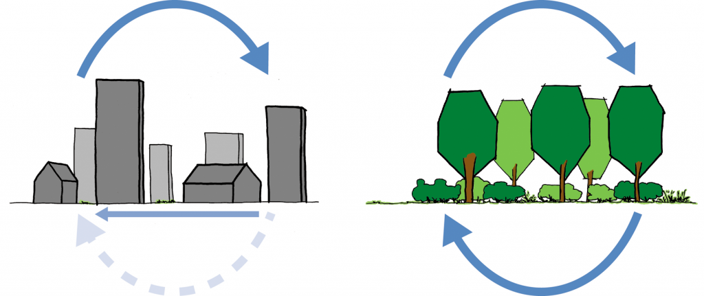 Illustration 1. Left the water cycle in urban areas, where a lot of water flows away due to the amount of surface which does not allow water to infiltrate. In nature areas, on the right, infiltration does occur which limits the amount of water flowing away via the surface and limits nuisance and flooding.