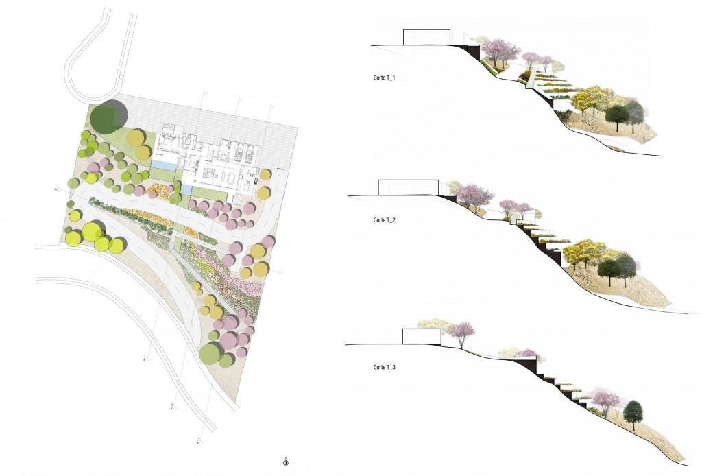 Figure 6: Masterplan and sections of the Tumbaco Garden by Daniel Sáenz. © Sáenz Oficina de Paisaje