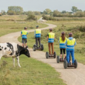 Afbeelding 1: Segway PT Ervaring in Pure Natuur. Bron: Segway Ouddorp.